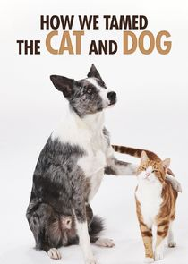 Picture How We Tamed the Cat and Dog Cat Tales: In From The Wild