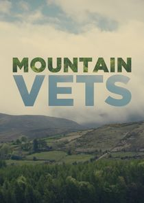 Picture Mountain Vets Episode 1