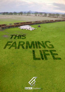 Picture This Farming Life Episode 5