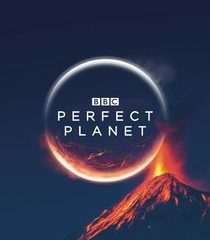 Picture Perfect Planet Oceans
