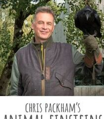 Picture Chris Packham's Animal Einsteins Communicators