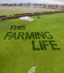 Picture This Farming Life Episode 10