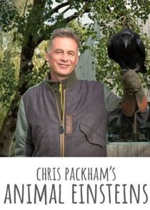 Picture Chris Packham's Animal Einsteins Builders