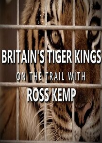 Picture Britain's Tiger Kings - On the Trail with Ross Kemp Episode 2