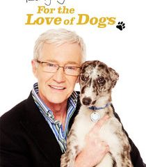 Picture Paul O'Grady: For the Love of Dogs Episode 1