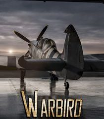 Picture Warbird Workshop Hurricane